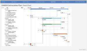 Illustrative Gantt chart for CANDID
